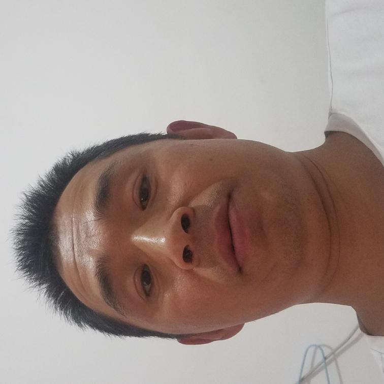 樱花谷歌的照片