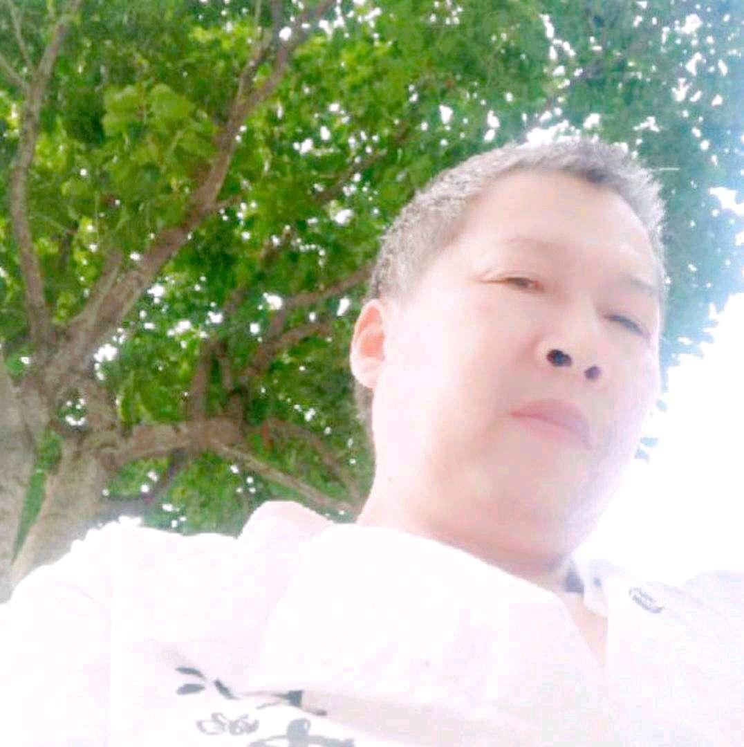 文侠……杨家将的照片