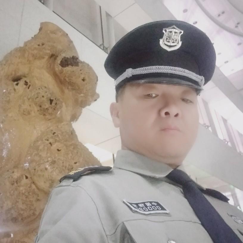 珍珠熊的照片