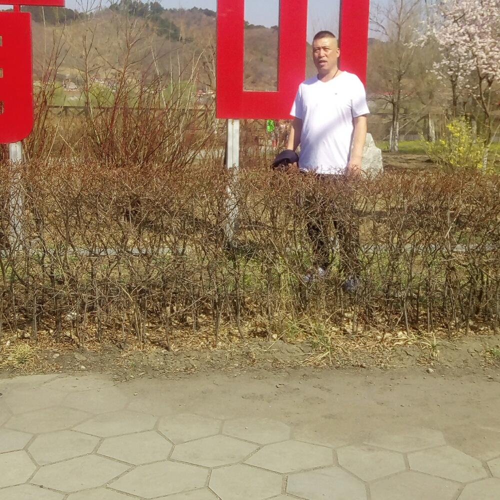 樱桃向欢呼的照片