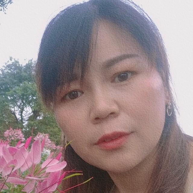 黄玫瑰123456的照片