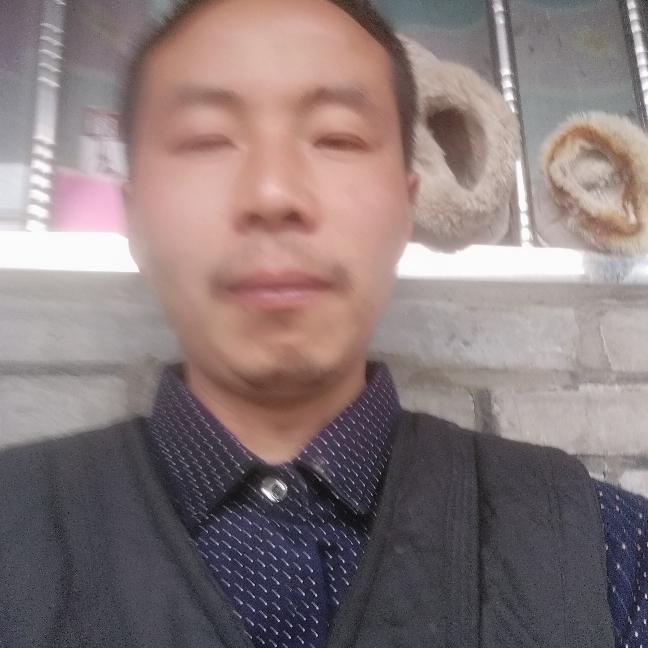 正杨的照片