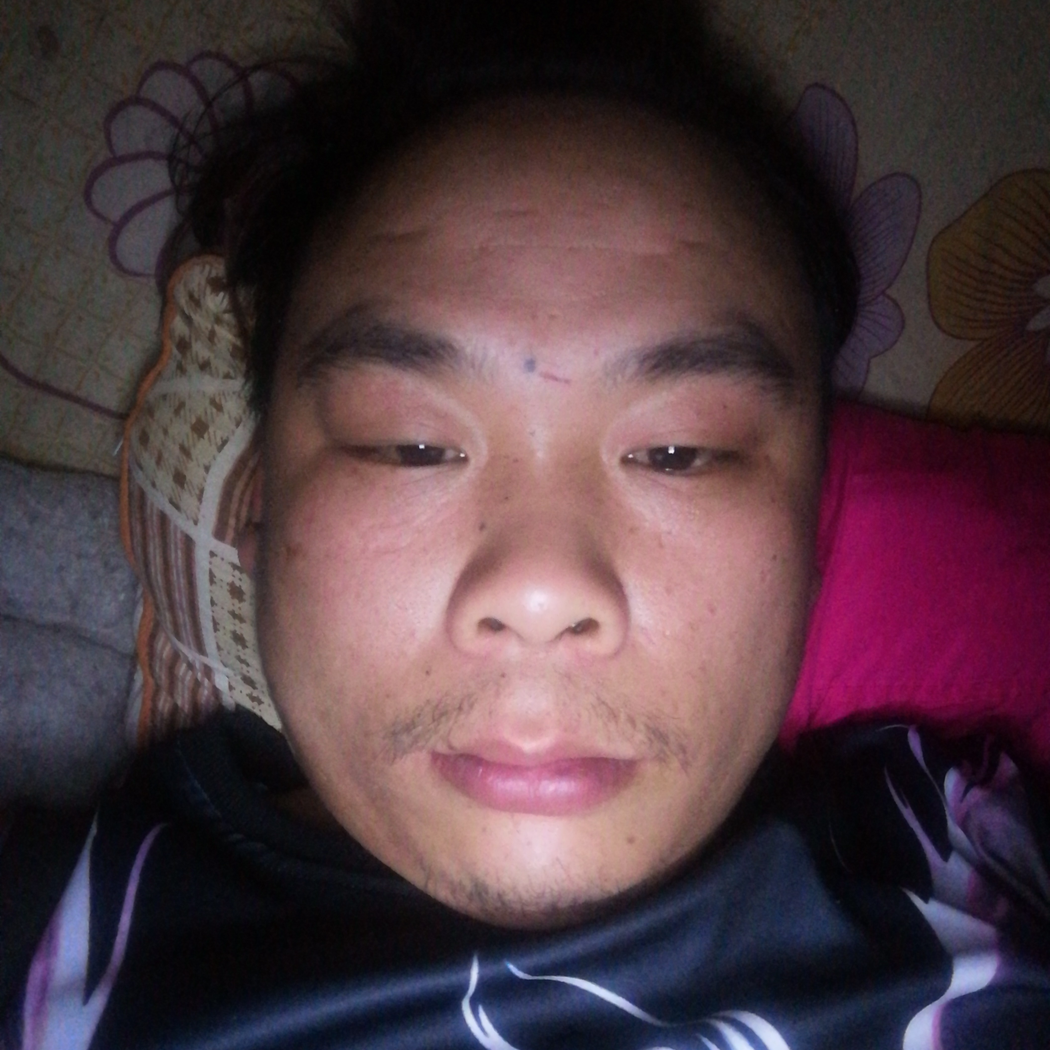 大白昏睡的照片