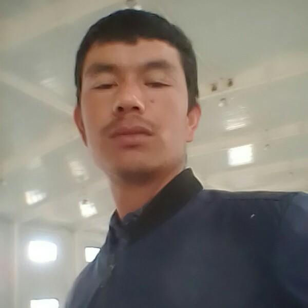 穆太力普的照片