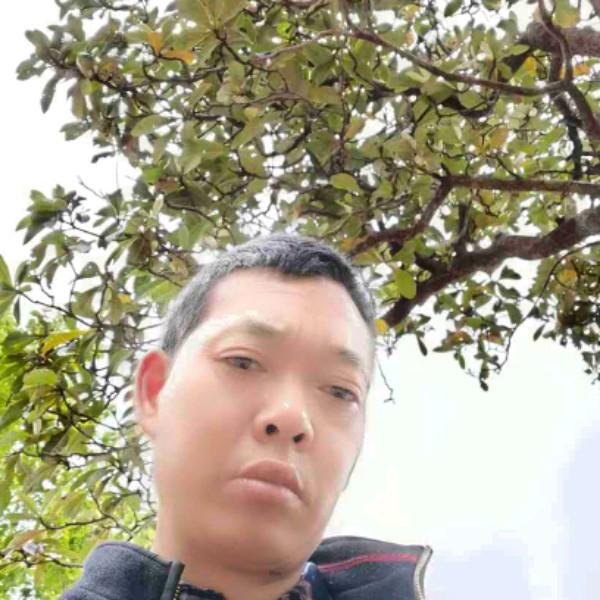 杨奇弟的照片