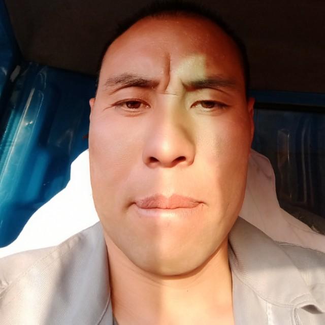 龍貓彼年的照片