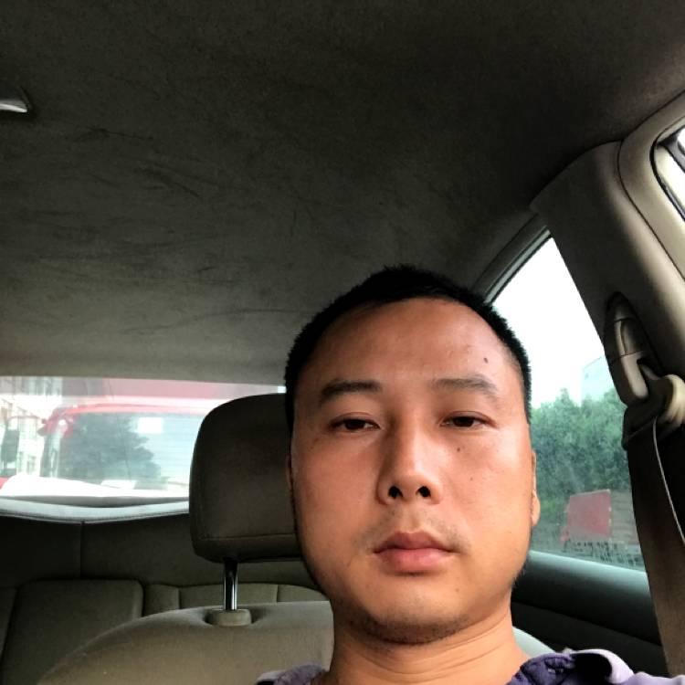 oO胡杨Oo的照片