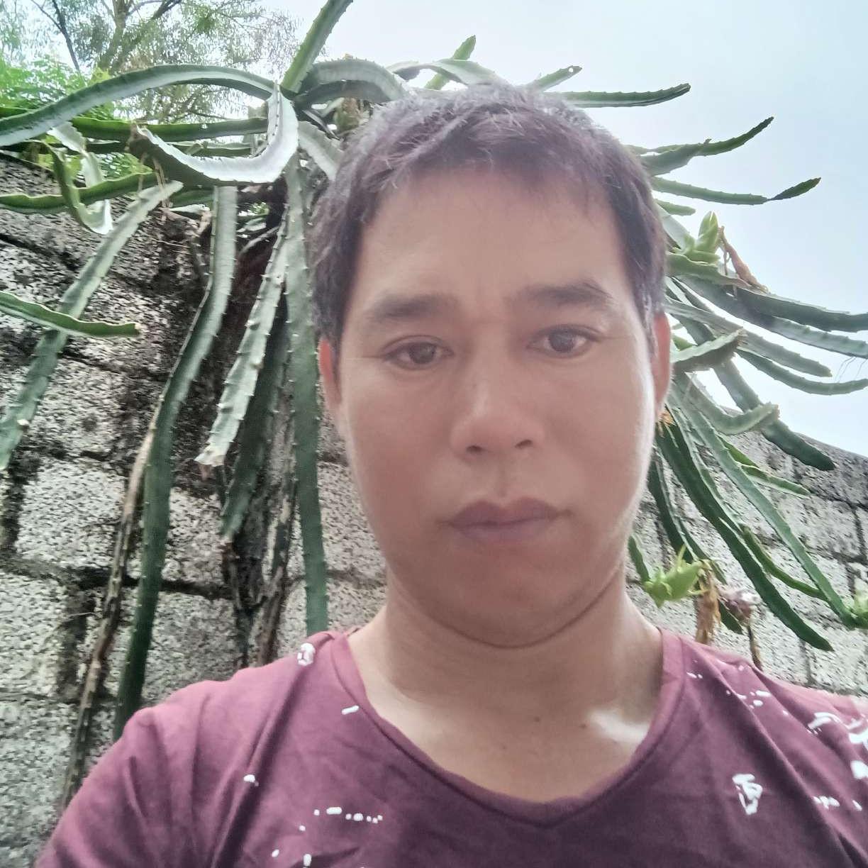 泥猴桃相许无限的照片