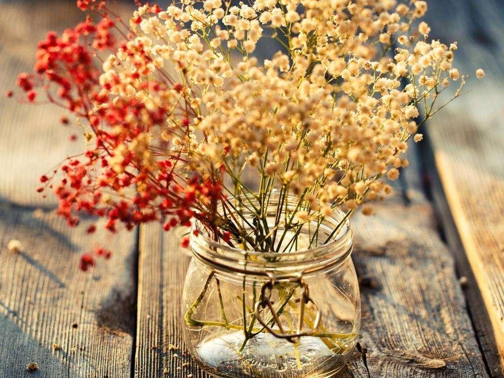 离异女南京我主良缘寻爱记:陌上花开,情暖意到真爱来