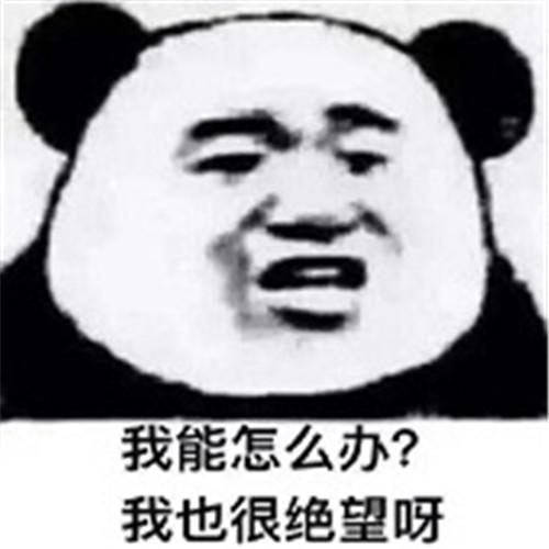 1530695238036.jpg