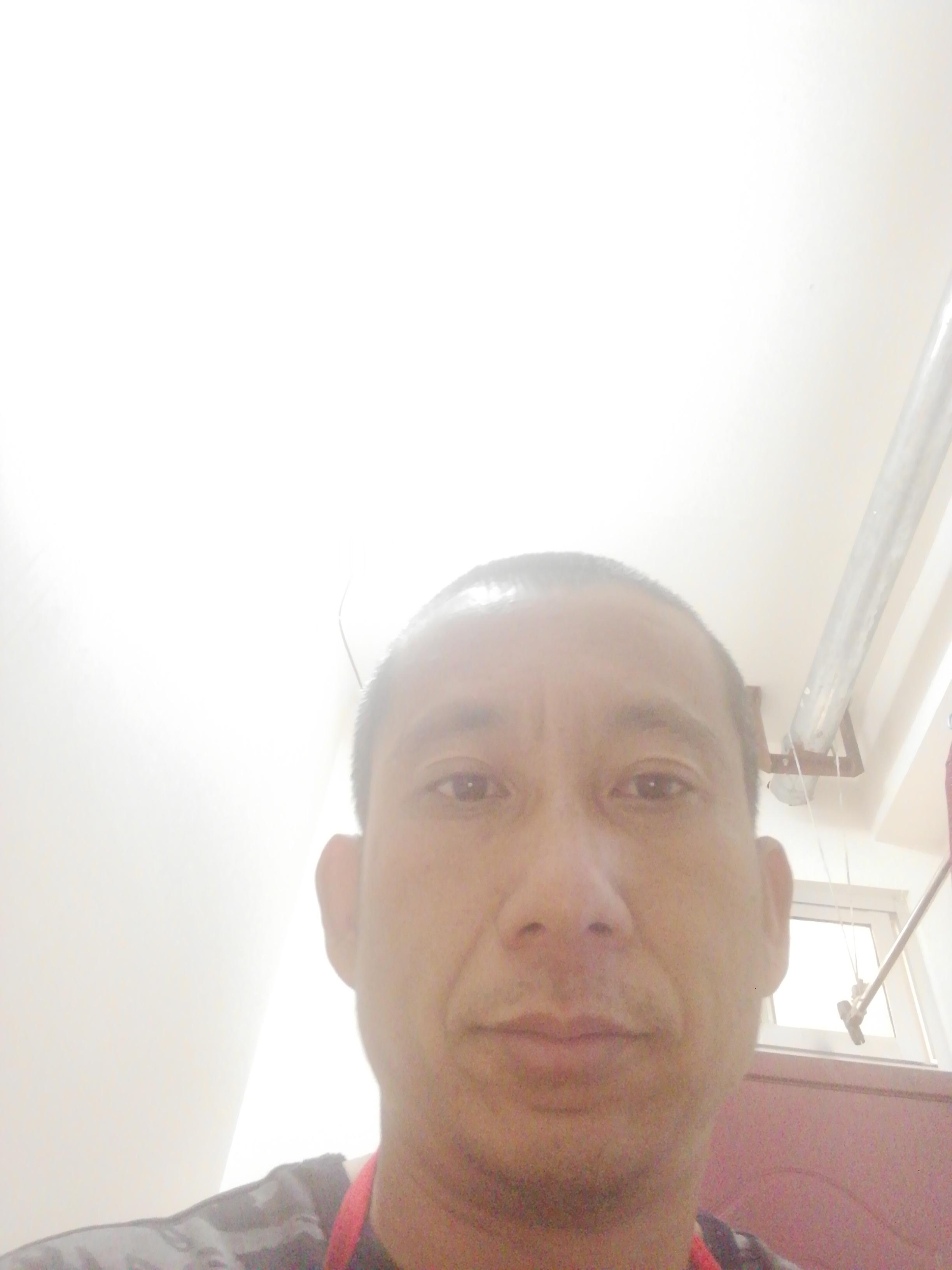 王学杨的照片