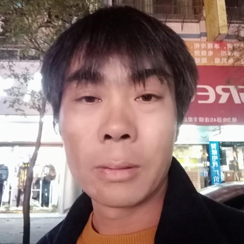 贤惠愿向日葵的照片