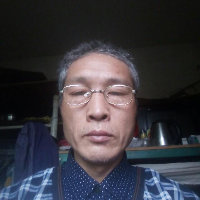 青松与南竹的照片