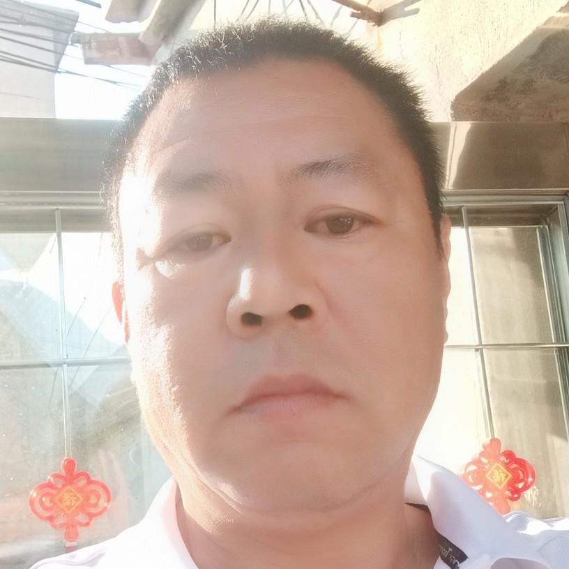 王伟丽的照片
