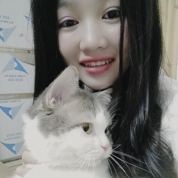 可爱的猫米酥的照片
