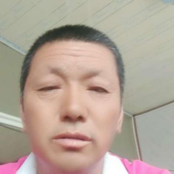 辛江的照片