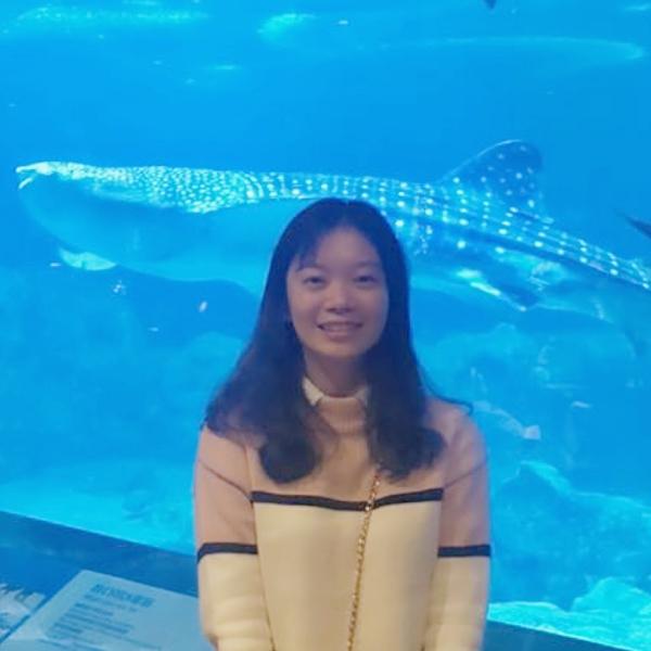 海底漫步大鲸鱼