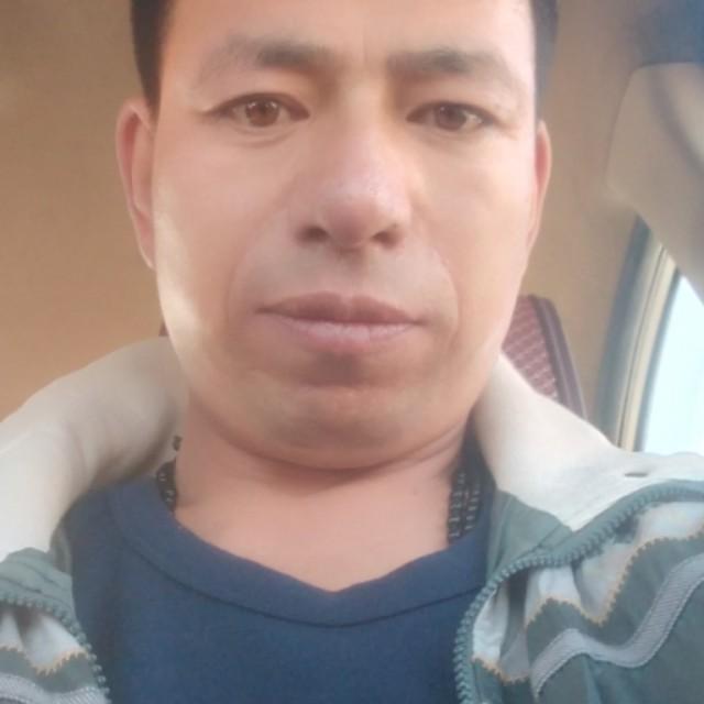 李树峰的照片