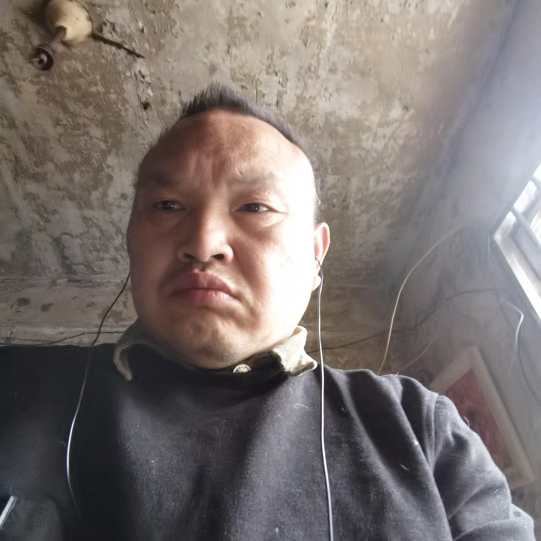 秦峰小宝的照片