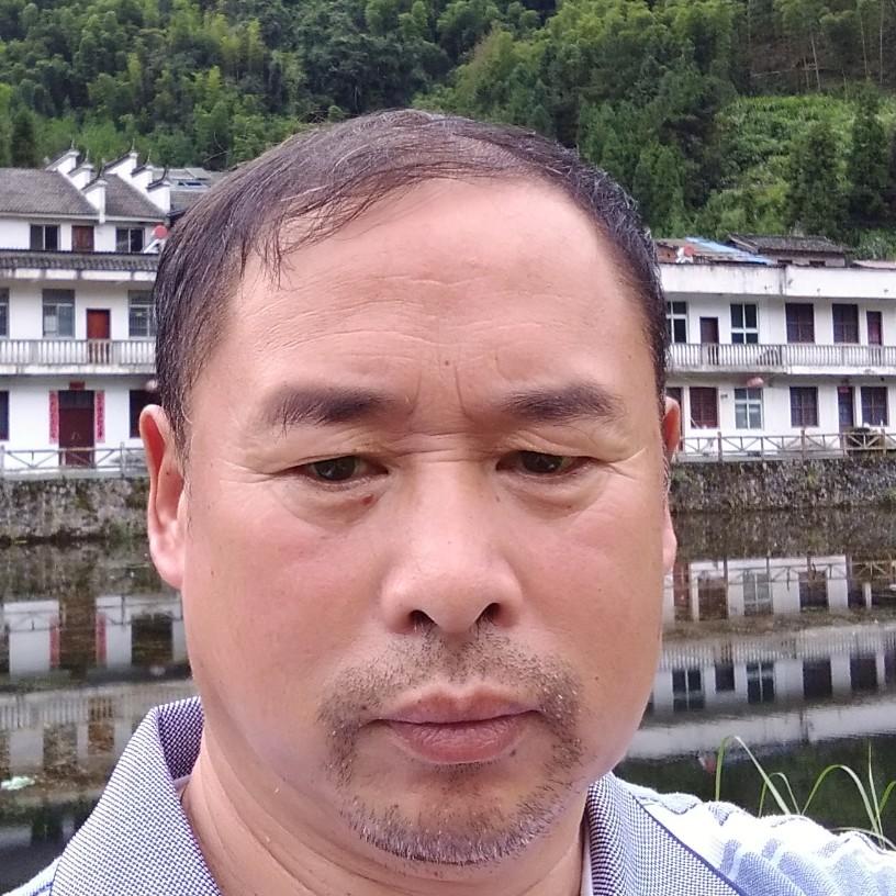 竹中缘的照片