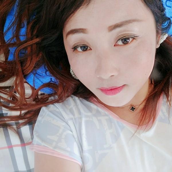 蝶戀梅的照片