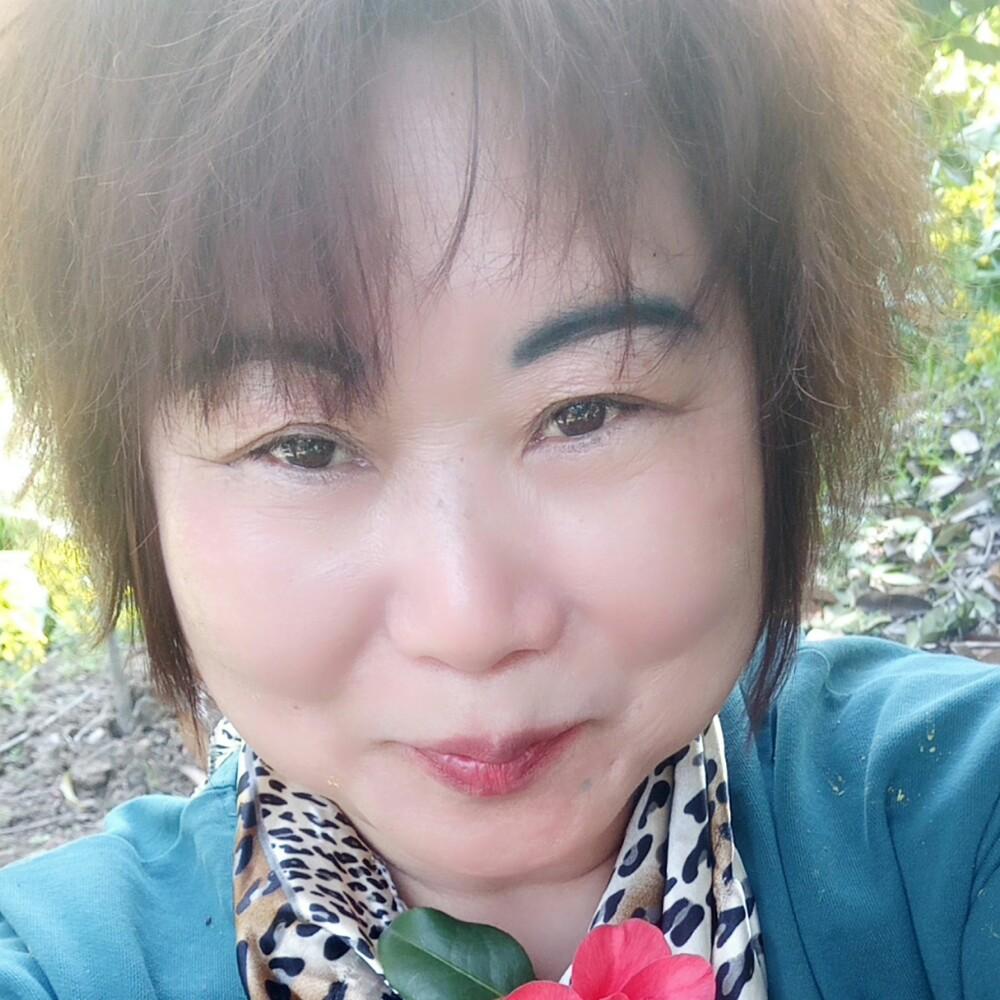 星星贤惠的照片